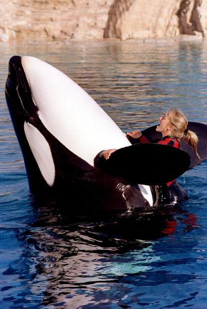 WhaleFriendship.jpg